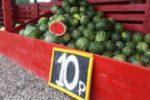 Снижены цены на арбузы! Налетайте!
